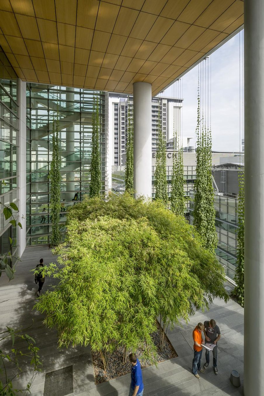 The integration of nature into the campus is profound.  The terraced nature of the buildings allows for multiple opportunities to insert plants into the campus environment.  Trees punctuate meeting spaces, and hanging ivy create curtains around open spaces.